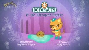 The Octonauts Season 2 Episode 8