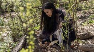 The Walking Dead Season 11 : Hunted