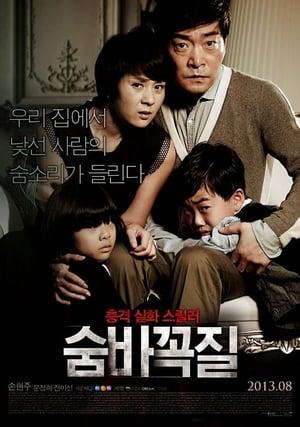 Hide and Seek (2013)