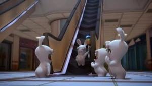 Les Lapins Crétins : Invasion: 1×73