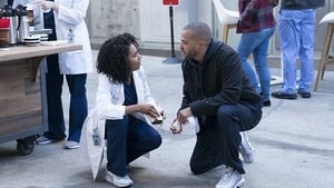 Grey's Anatomy - Old Scars, Future Hearts Wiki Reviews