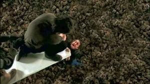 Les Rats (2002)