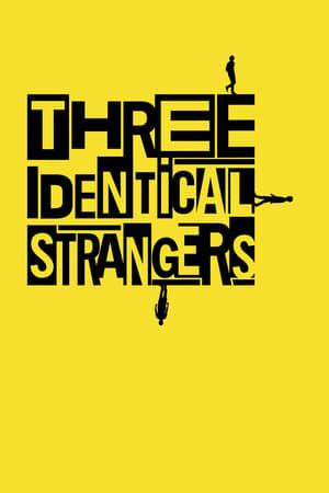 Image Three Identical Strangers