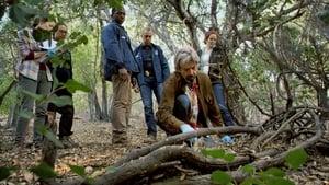 Bosch Season 1 Episode 1