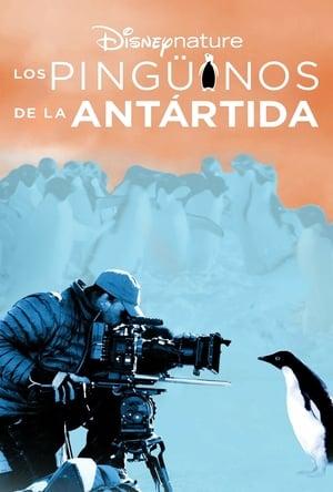 Los pingüinos de la Antártida