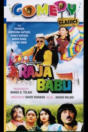 Raja Babu 1994 Hindi Movie Download HD 720p