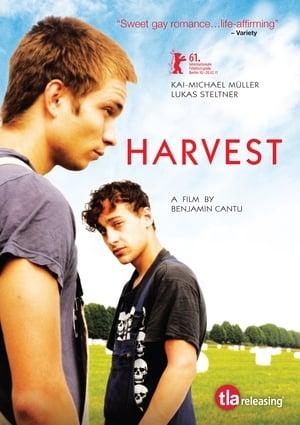 Harvest-Robert Loggia