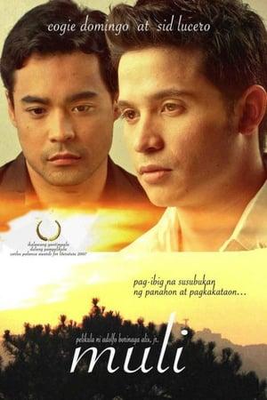 The Affair (2010)