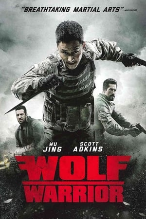 Wolf Warrior 3 streaming