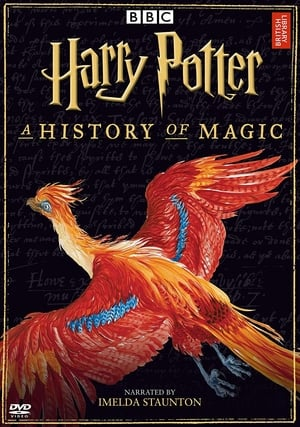 Harry Potter - A History Of Magic (2017)