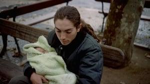 Ossos 1997