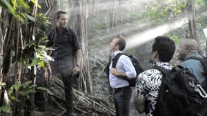 Hawaii Five-0 Season 6 : Mai Ho'oni I Ka Wai Lana Malie (Do Not Disturb the Water that is Tranquil)