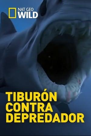 Shark Vs Predator