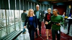 CSI: Cyber Sezon 2 odcinek 10 Online S02E10
