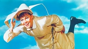 The Flying Nun Images Gallery