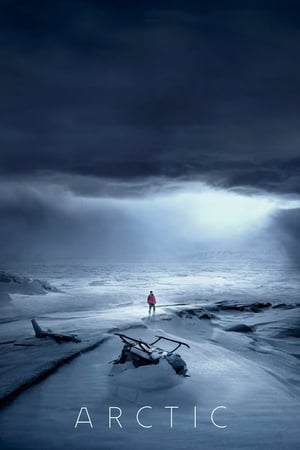 Watch Arctic Full Movie