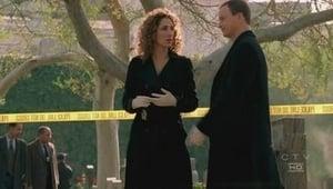 CSI: Kryminalne zagadki Nowego Jorku: 2×15