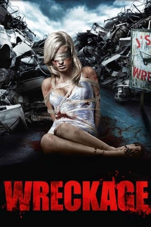 Wreckage-Azwaad Movie Database