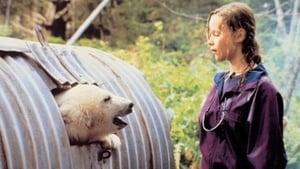 Alaska – Die Spur des Polarbären (1996)