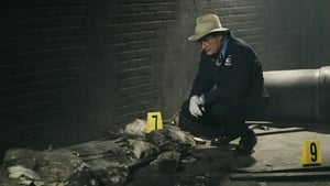NCIS Season 4 :Episode 19  Grace Period