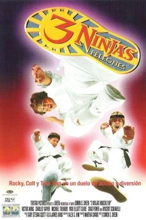 3 Ninjas Peleones