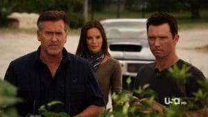 Burn Notice 5. Sezon 7. Bölüm izle