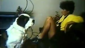 Meu Cachorro, Meu Amante Trailer