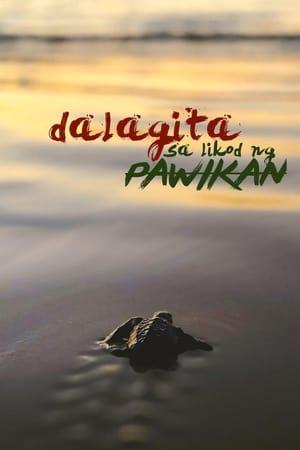 Watch Dalagita sa Likod Pawikan online