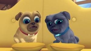 Puppy Dog Pals: 1×1