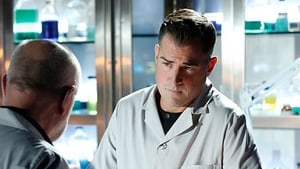 CSI: Crime Scene Investigation: 15×12