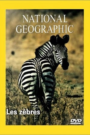 National Geographic Les Zèbres (1970)