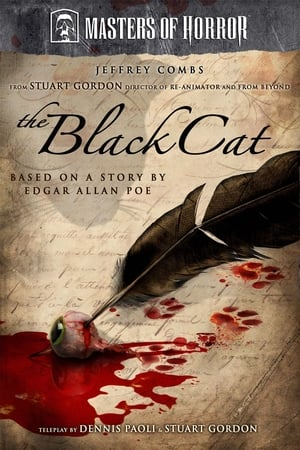 Poster The Black Cat (2007)