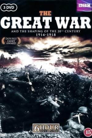 The Great War and the Shaping of the 20th Century (1996)