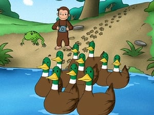 Curious George 3×22