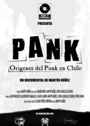 Pank : Origins of Punk Music in Chile (2010)