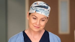 Grey's Anatomy Season 14 :Episode 13  You Really Got a Hold on Me