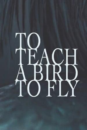 To Teach a Bird to Fly (2020)