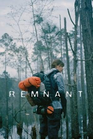 Image Remnant