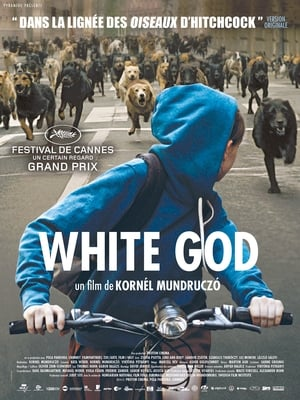White God HDTV 720p TRUEFRENCH