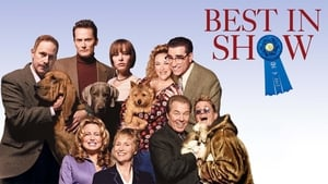 Very important perros – Best in shows