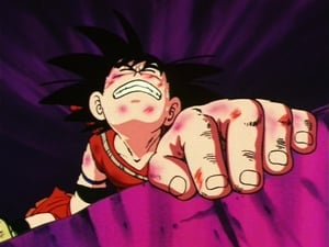 Dragon Ball Season 1 :Episode 116  A Taste of Destiny