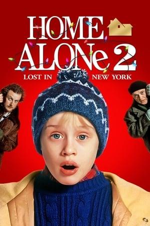 მარტო სახლში 2: ნიუ–იორკში დაკარგული Home Alone 2: Lost in New York