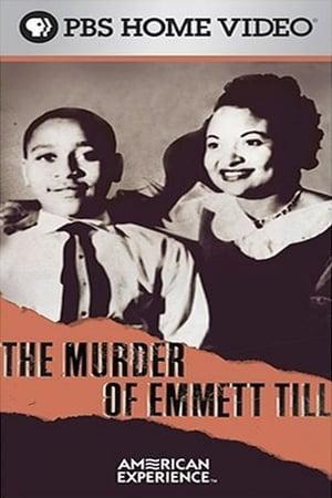 The Murder of Emmett Till-Andre Braugher