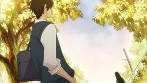 Kimi ni Todoke: From Me to You Season 1 Episode 16