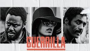 Guerrilla image