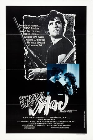 Stark Raving Mad film complet streaming vf