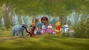 Into the Hundred Acre Wood