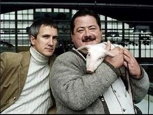 Image Ein Schwein namens Daisy