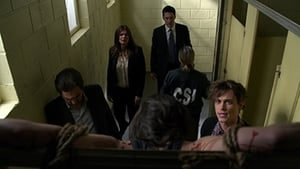 Criminal Minds Season 9 Episode 19