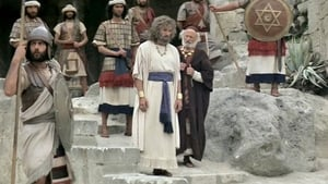 Rei David